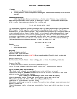 help with report writing