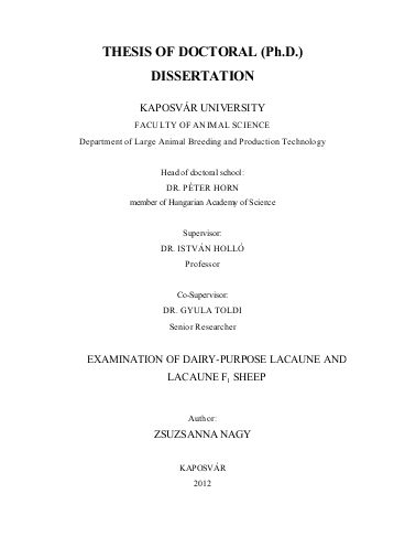 Doctoral thesis on spirituality