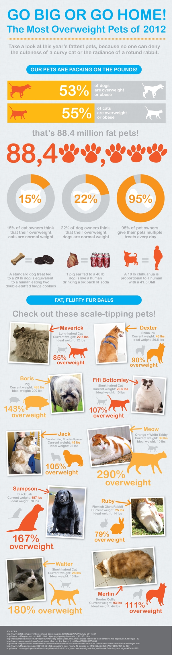 overweight pets statistics