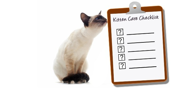 New Kitten Checklist